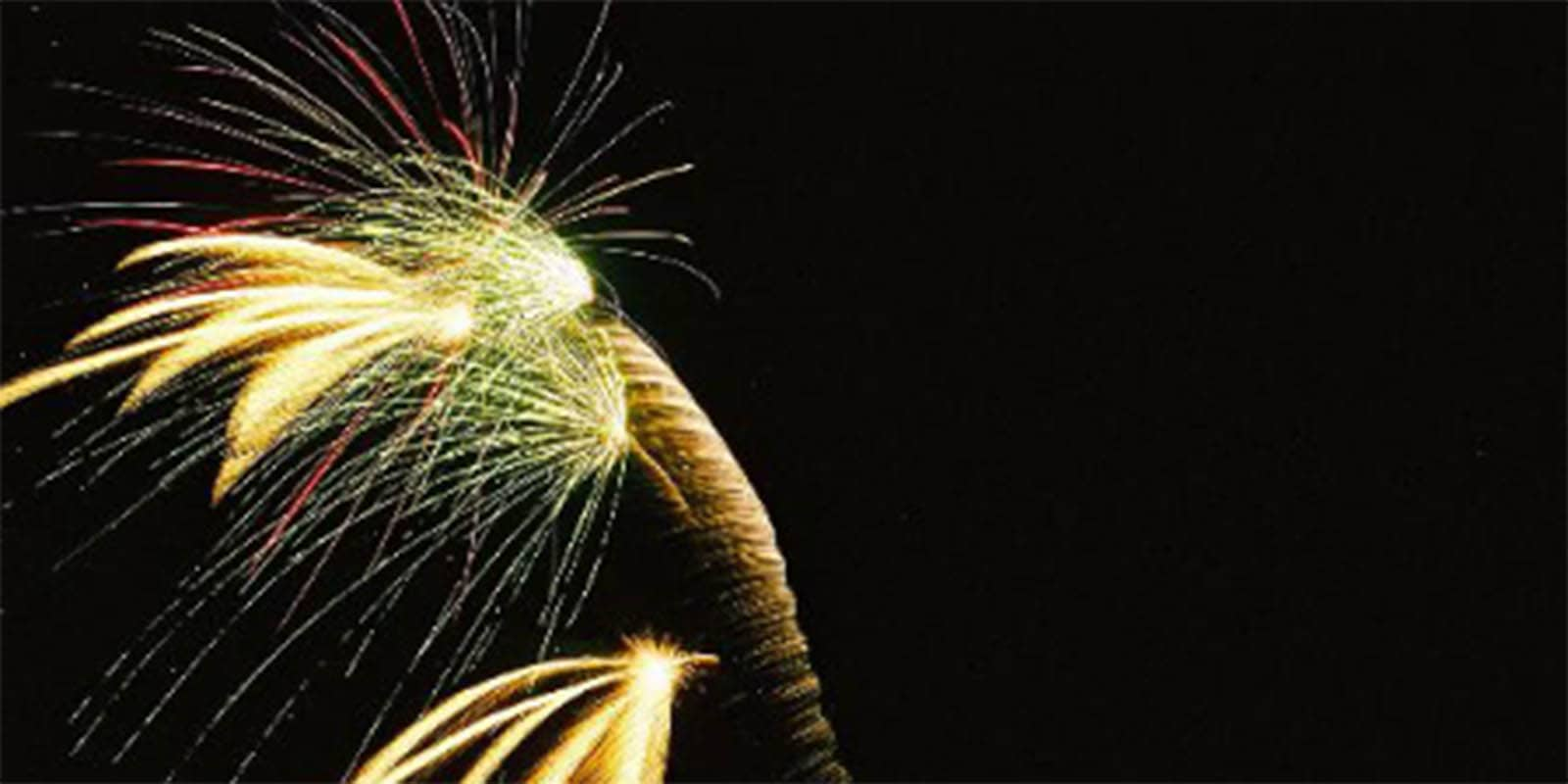 La Pine Fireworks