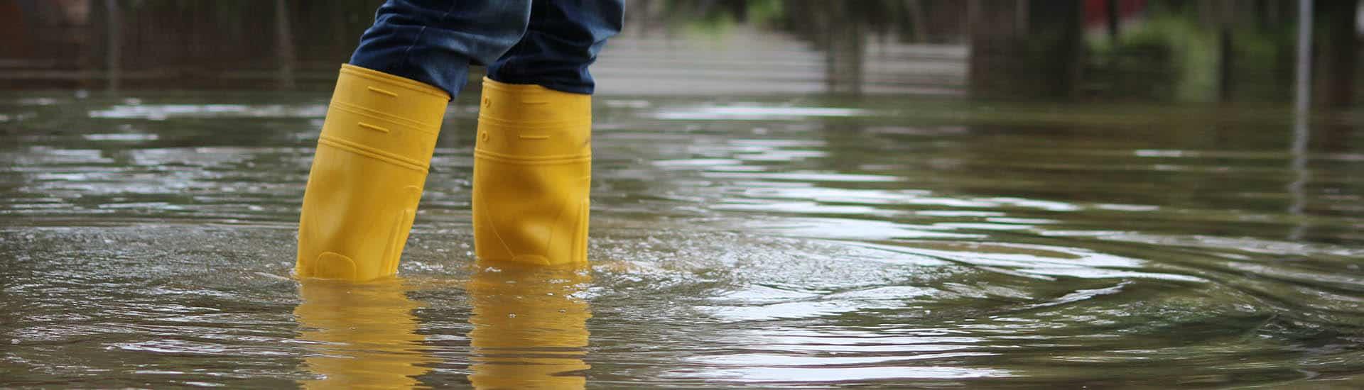 Flood Insurance Quotes Oregon Flood Insurance Free Flood Insurance Quote  Bancorp Insurance